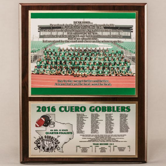 12 x 15 Classic Team Photo Plaque for Football Champions