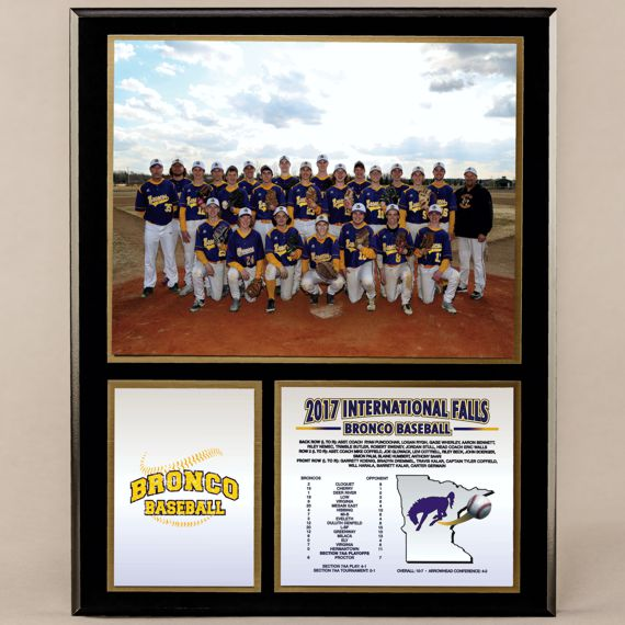 12 x 15 Classic Team Photo Plaque for Baseball Champions