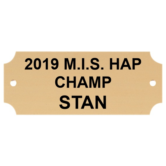 1 x 2-1/2 Gold Brass Perpetual Plaque Plate