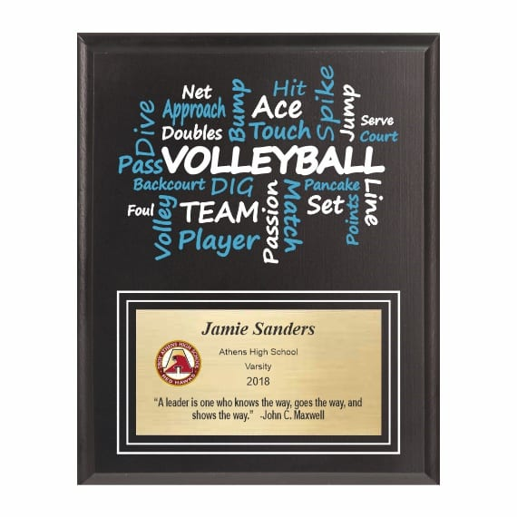 Amazing Competitor Series Volleyball Black Plaque