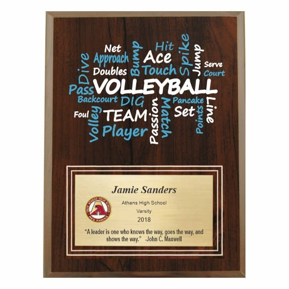Amazing Competitor Series Volleyball Cherry Plaque